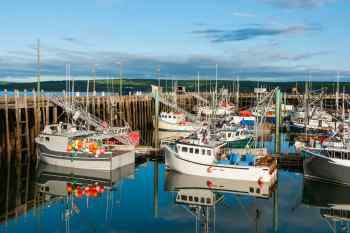 Digby Harbor