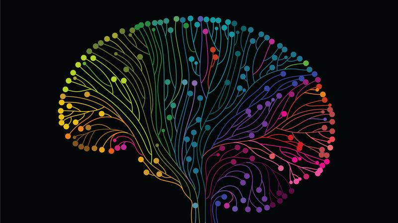 Hiểu về não kỳ 4 - Tâm trí - Mind