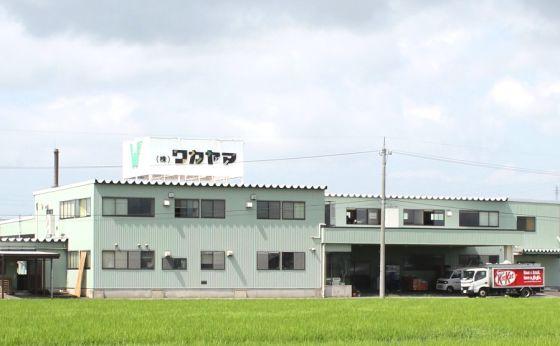 株式会社 ワカヤマ