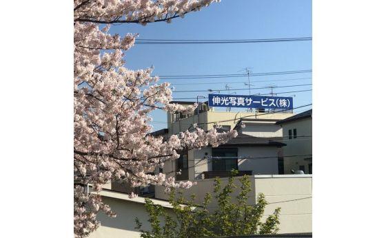 伸光写真サービス株式会社