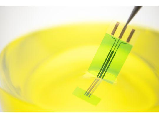 【応用製品】P-Flex™  PET で作る電気化学センサー