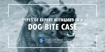 dog bite expert