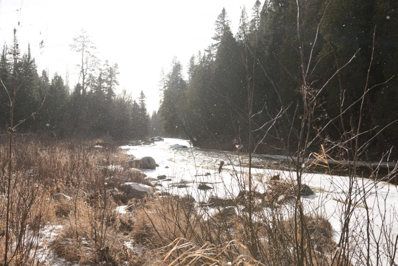 A photo taken from the banks of baptism river. There's dry grases in the foreground and sparkles from snow in the air.
