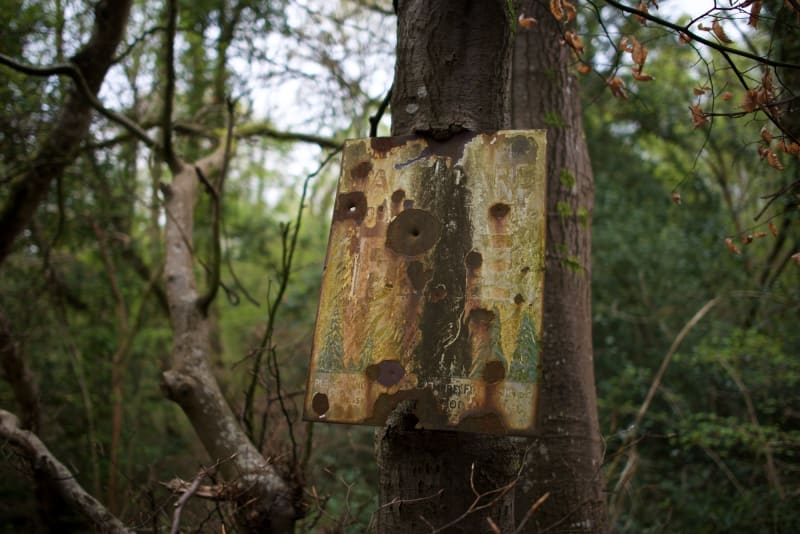 A badly rusted metal sign attached to a tree trunk in a woodland. The letters 'fire' are just visible.