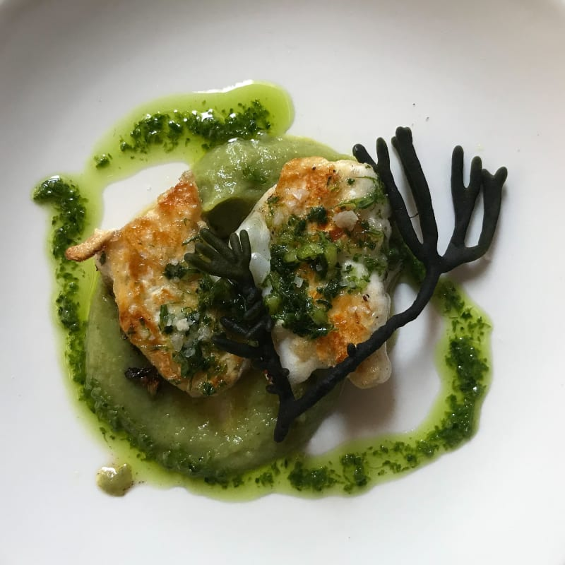 Looking down on a plate of food. There's two fried pieces of cod's chek, with a sprig of seaweed and green dressing drizzled about.
