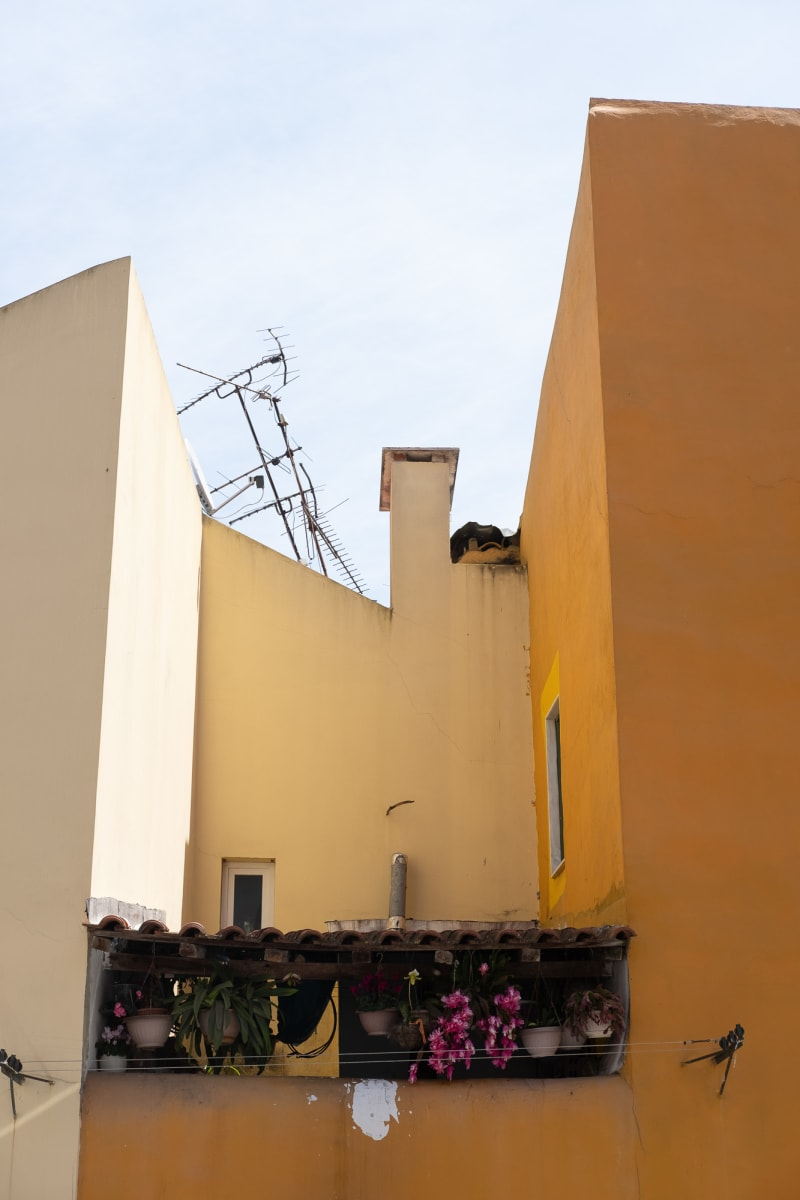 A photo of the walls and courtyard of a small house. The three walls are coloured in different shades of yellow - deep, mid, and light.