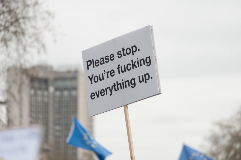 A single protest sign held high in the air. It's white with black text. The text reads 'Please stop. You're fucking everything up.'
