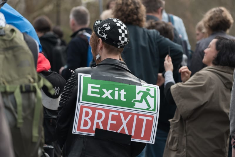 "A protest sign taped to the back of a woman in a black leather jacket. The sign looks like an emergency exit sign and reads ""Exit; BREXIT""."
