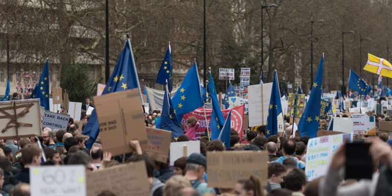 A sea of blue EU flags and protest signs in the crowd at the protest.