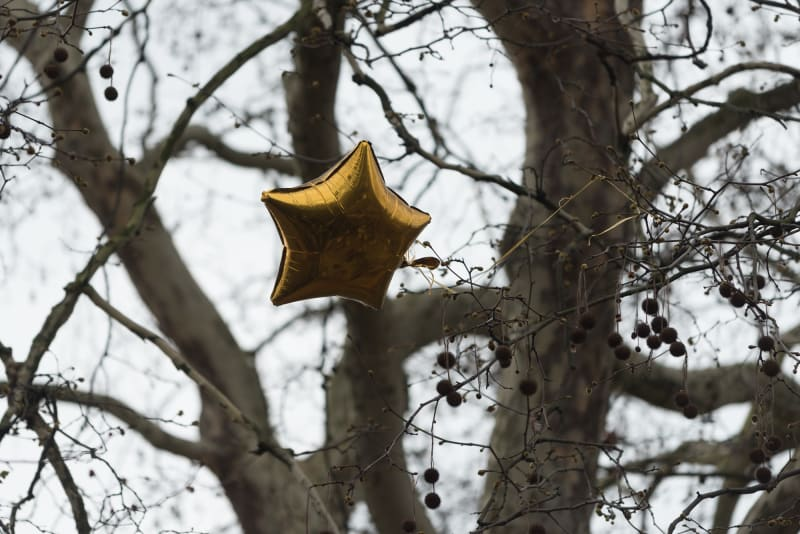 An inflatable gold star stuck in a tree.