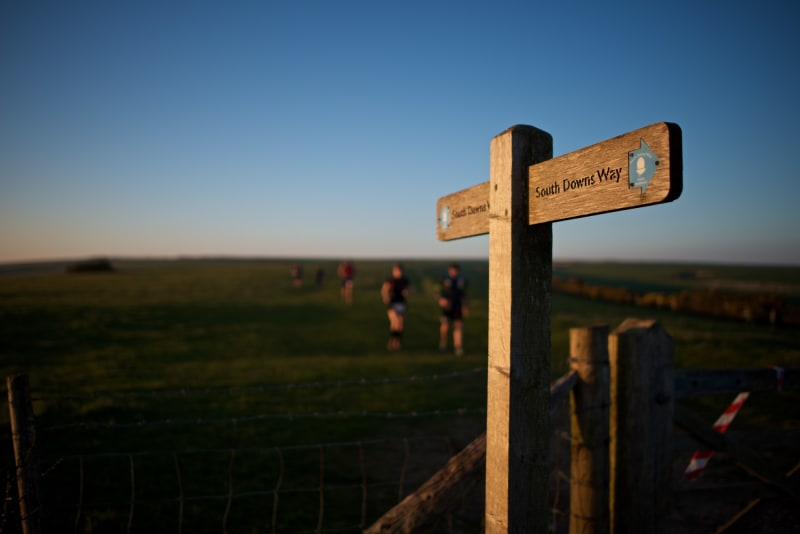 A wooden sign points the way along the South Downs way in late afternoon sunlight.