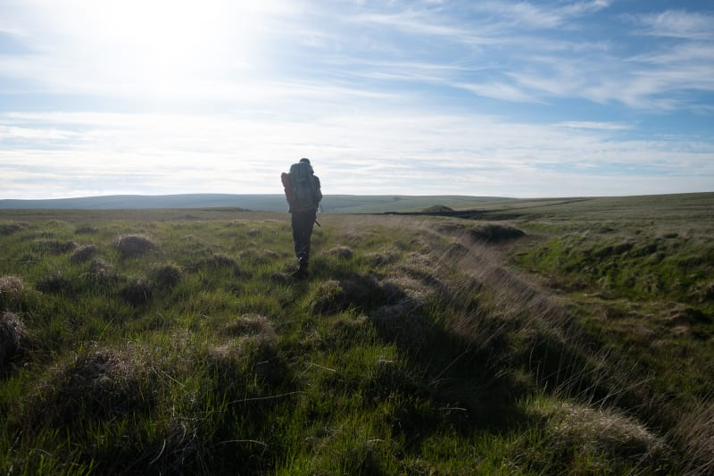 A hiker walks ahead of the camera silhouetted by afternoon sun ahead. There's tufty grass all around and no clear path.