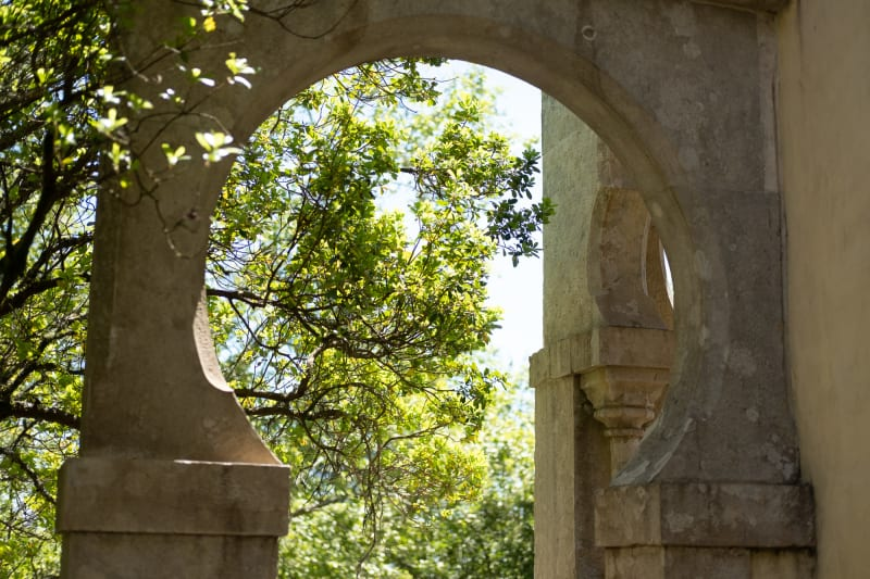Looking through a circular arch between two pillars to some trees beyond.