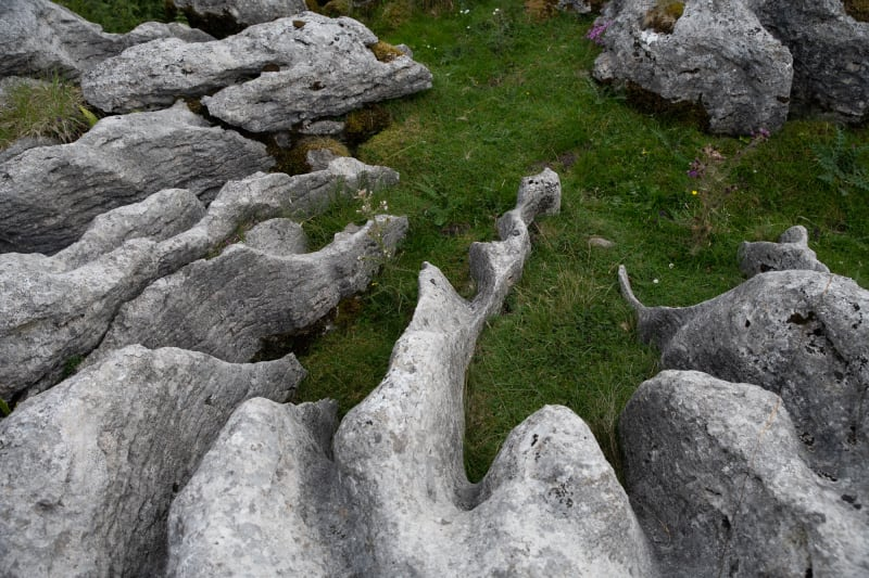 Looking down at a limestone pavement in Whernside. The limestone is severely eroded and filled with grass in between.