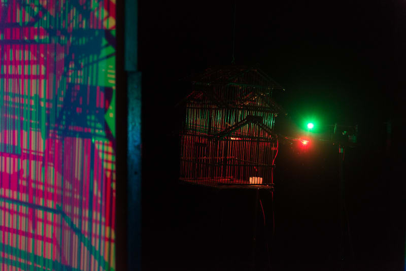 A birdcage is hung outside at night with bright green and red leds just behind it. In the foreground the shadows and light are projected on a screen.