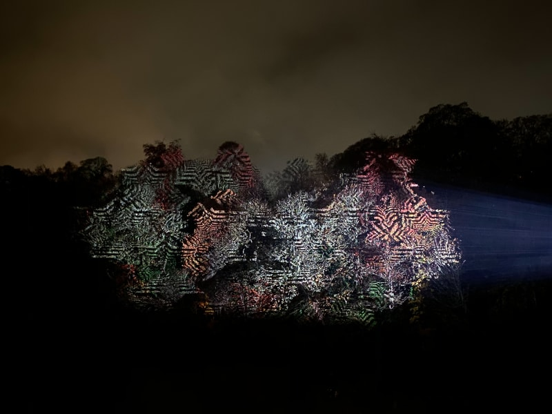 A projector projects repeating patterns on to the trees on a far riverbank.