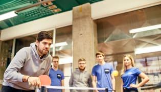 jobs.at Recruiting GmbH - Teamkultur