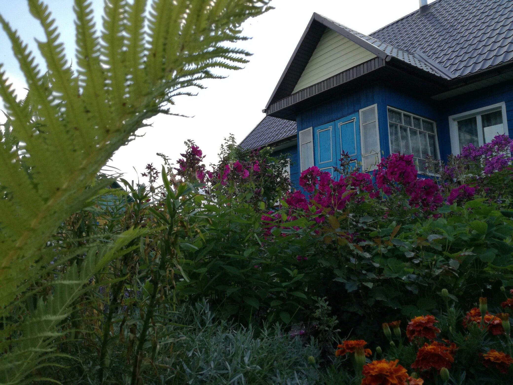 Нюансы покупки дачного участка в садовом товариществе