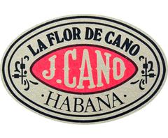 Flor de Cano