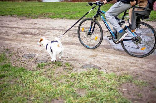 cycling2-1062x708.jpeg