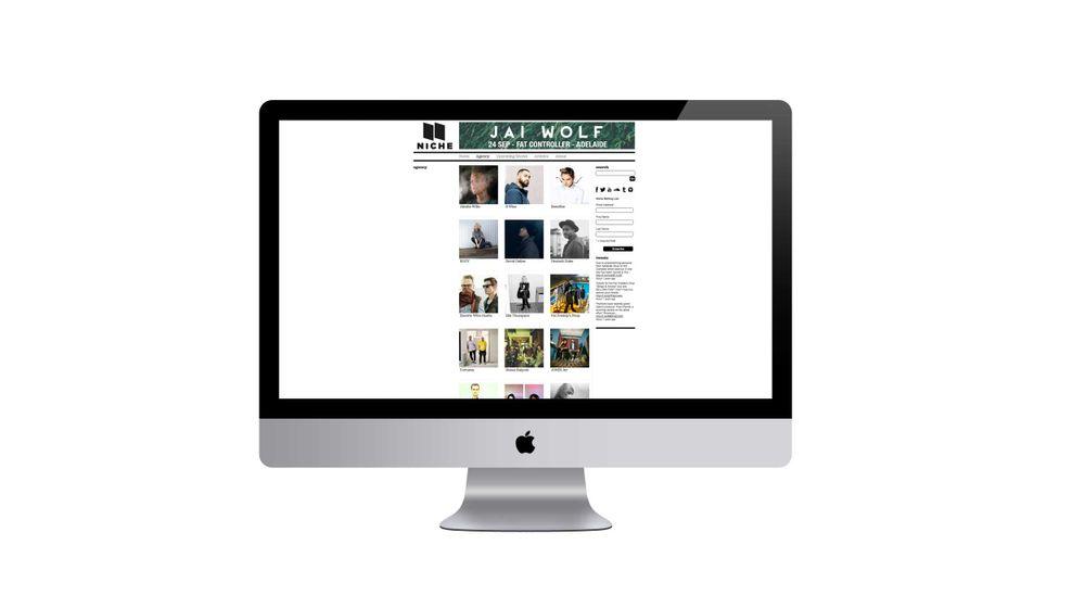 Niche-web-2.jpg