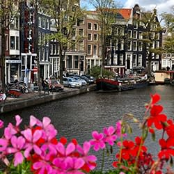 Flowers amsterdam canals