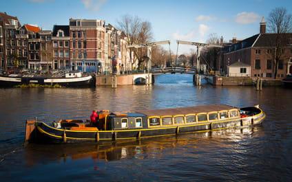 Salontjalk Bota Fogo Amsterdam