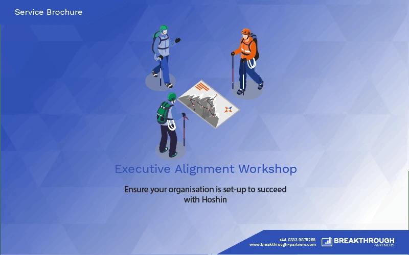 Executive Alignment Workshop Brochure