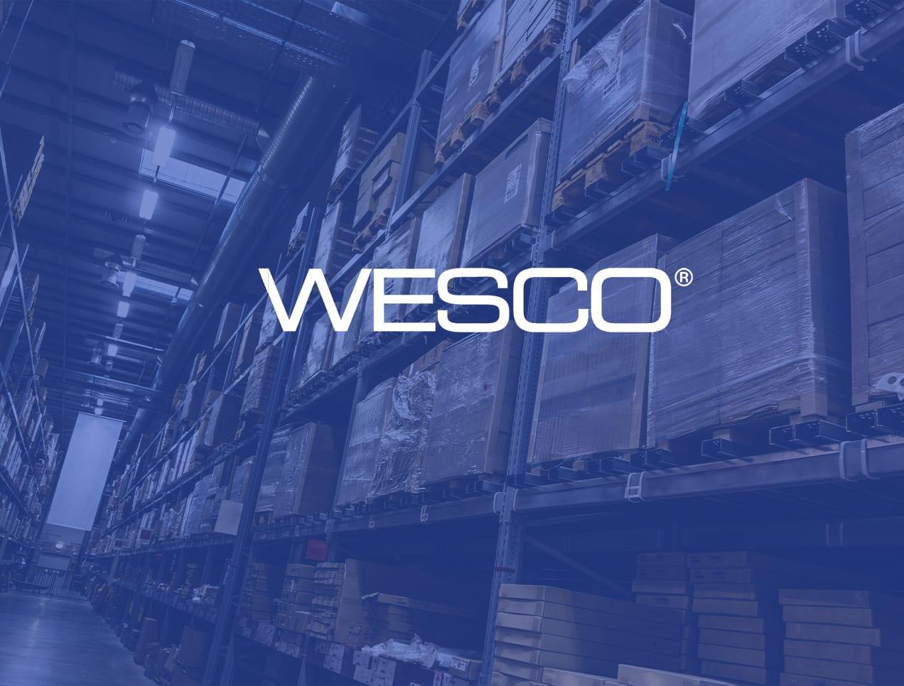 Wesco - Hoshin training and coaching