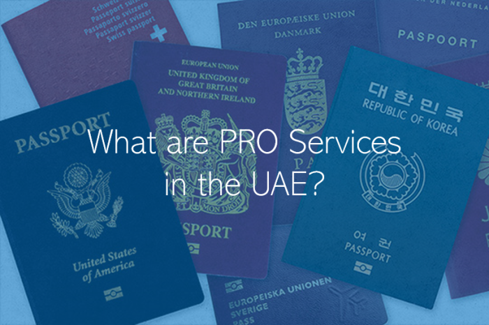 What are PRO Services in the UAE?