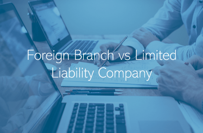 Company Structures in UAE Foreign Branch vs Limited Liability Company in Dubai Abu Dhabi wider UAE