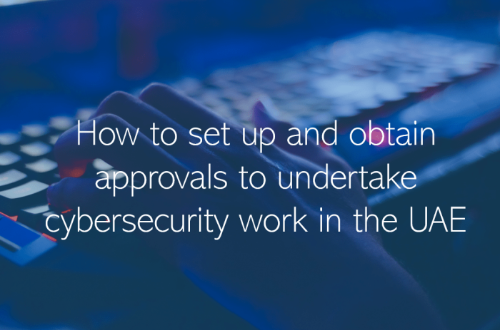 Cybersecurity companies in the UAE – how to set up and obtain approvals to undertake cybersecurity work in the UAE