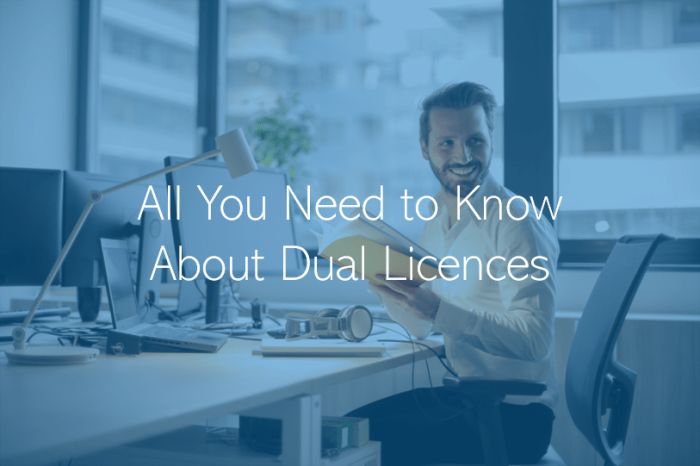 The Evolving UAE Business Landscape - Dual Licensing from UAE Free Zones