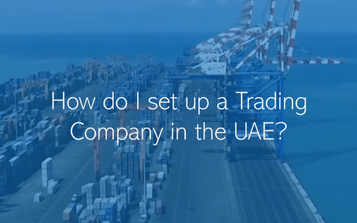 How do I set up a Trading Company in the UAE
