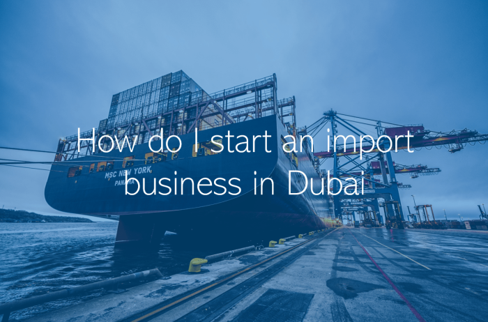 How do I start an import business in Dubai Abu Dhabi UAE