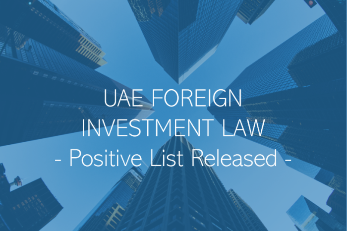 100% Foreign Ownership – Positive List Released