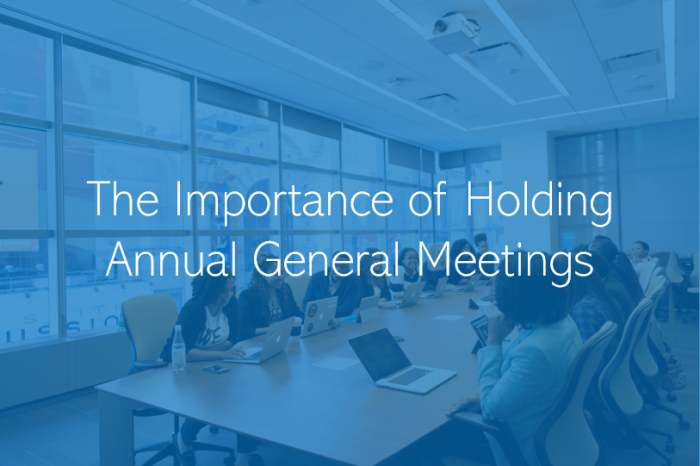 The Importance of holding Annual General Meetings (AGMs) for all UAE Companies