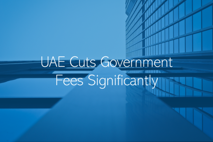 UAE Cuts Government Fees significantly across most Ministries