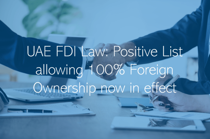 UAE FDI Law Positive List allowing 100 Foreign Ownership business in the UAE Dubai Abu Dhabi