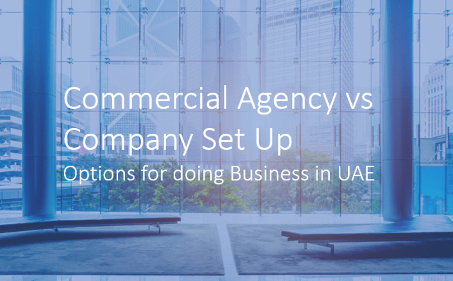 Commercial Agency vs Company Set Up Options for doing Business in UAE