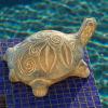 Terracotta Swirls Small Turtle