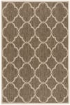 Brown Polypropylene Rug 4' x 6'