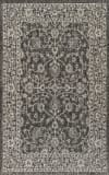 Vine and Border Textured Weave Indoor/Outdoor Black/Gray 4' x 6' Area Rug