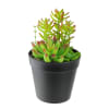 Faux Green Succulent Arrangement in Black Pot