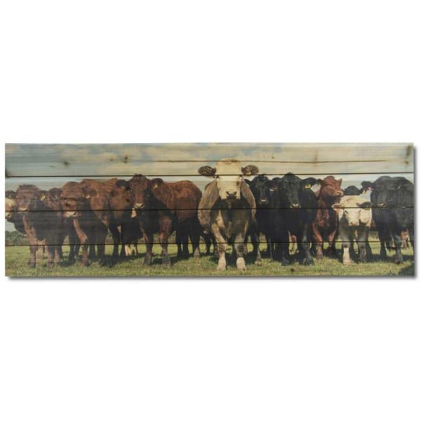 Cow Herd Print on Wood
