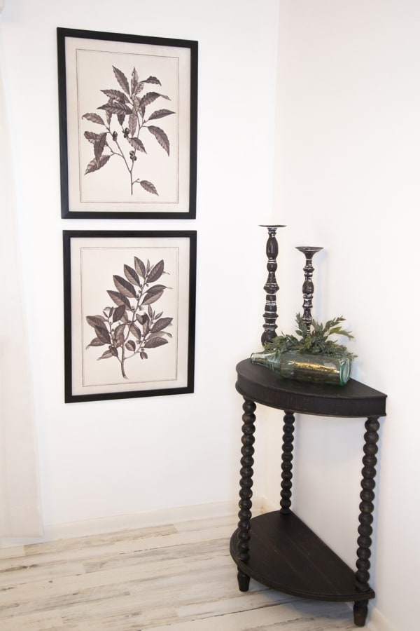Black & White Botanical Art - 2 AST