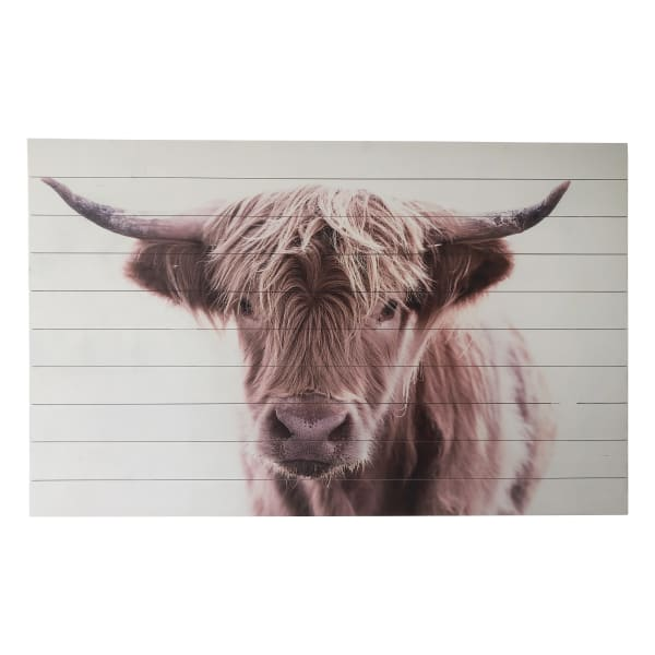Brown Highland Cow Large 48x30 Print on Wood