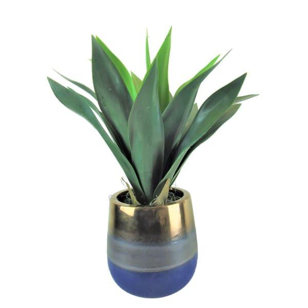 Agave Plant in Blue Gold Ceramic Pot