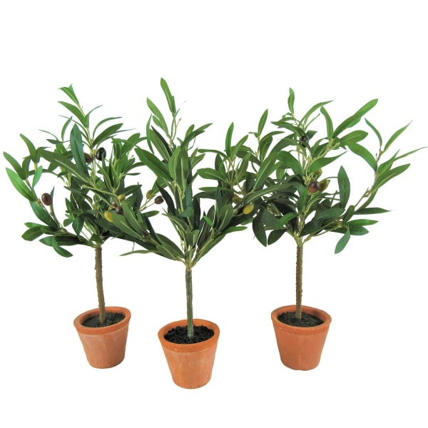 Faux Olive Tree Plant Set of 3
