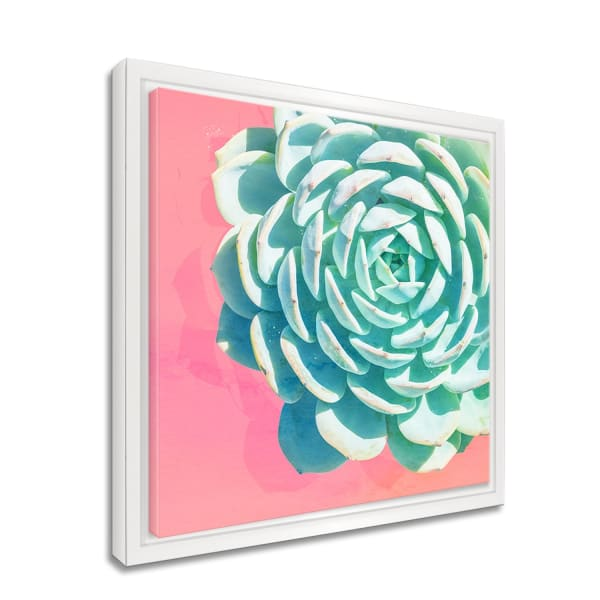 Bright-eyed II Framed Succulent Canvas Wall Art